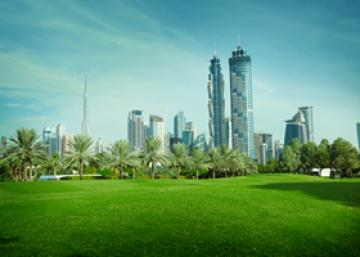 The 8 most important things to consider when moving to the UAE